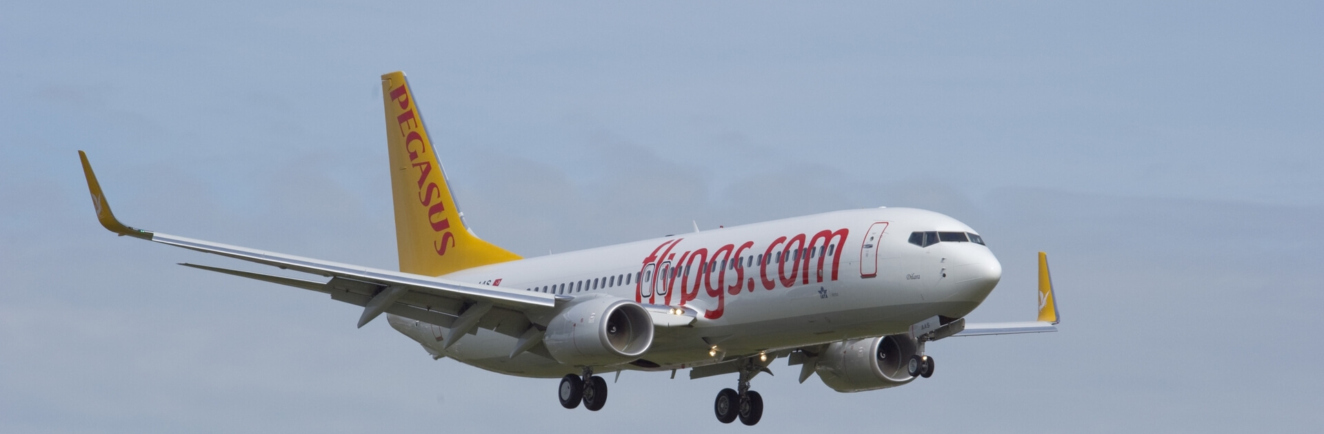 Pegasus Airlines !